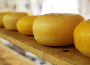 チーズについて