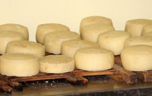 チーズの選び方