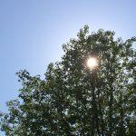 ポーラAPEXの新作マイクロディフェンザーを体験!PM2.5対策日焼け止め
