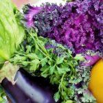 野菜不足は青汁で解消!飲みやすいおすすめの青汁を紹介します
