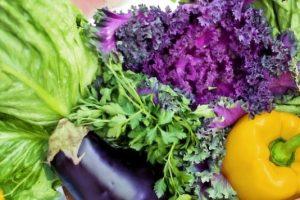 野菜不足 青汁