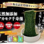 アカモク千寿藻の口コミ集めました!話題のギバサが通販でお得に買える